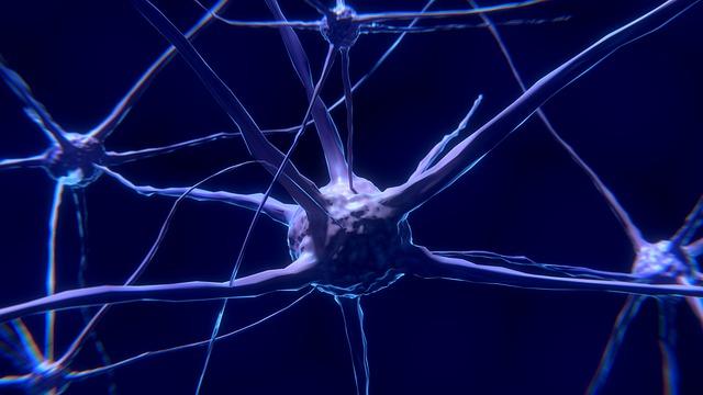 Cum iti poti antrena zilnic creierul