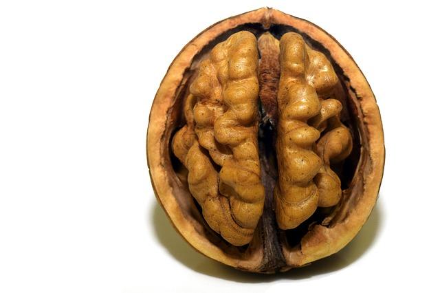 5 Alimente care iti ajuta creierul sa functioneze mai bine