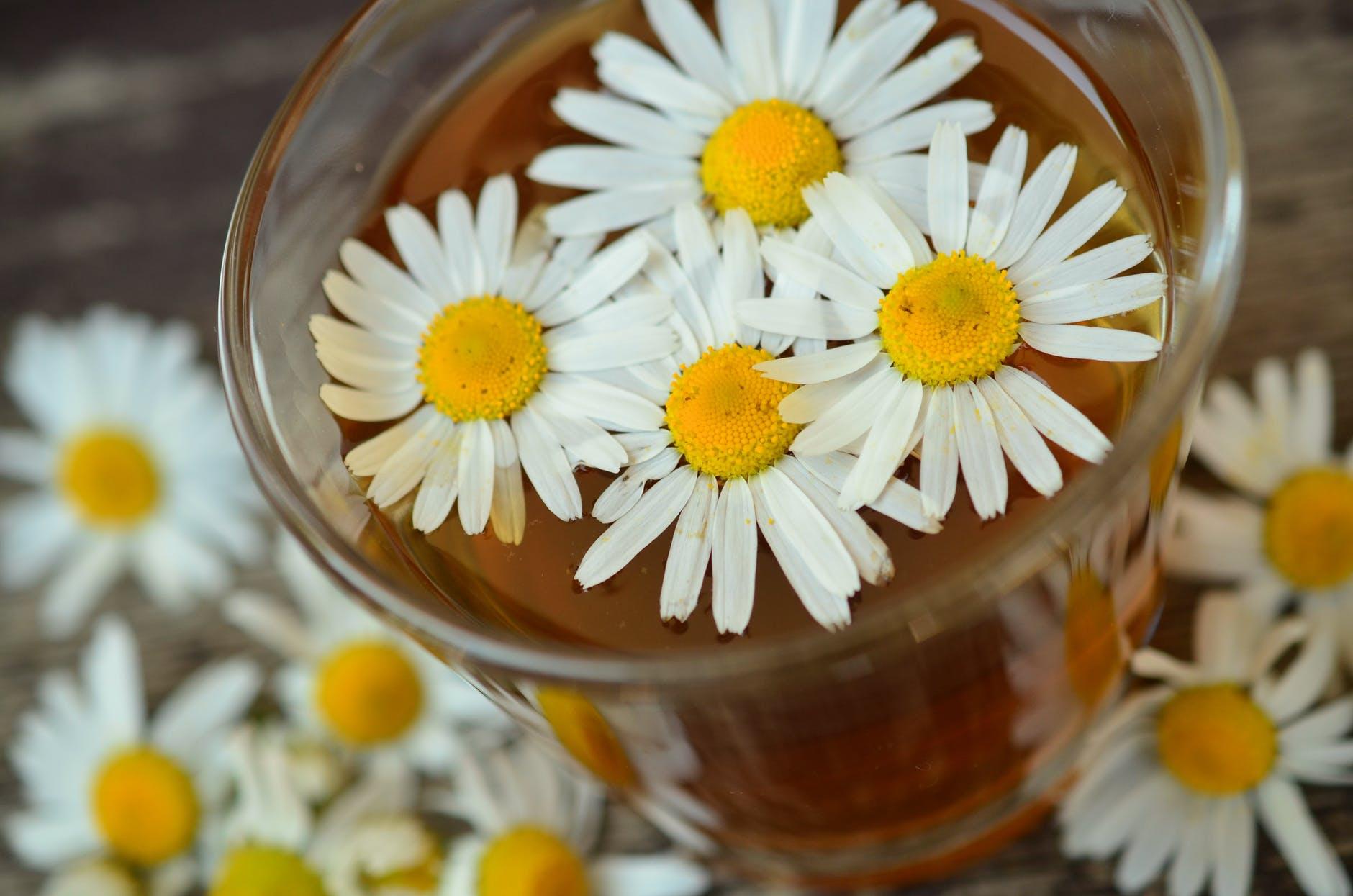 Ceai de musetel - Top 5 beneficii pentru sanatate