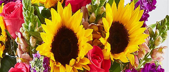 Ce-ti spun florile pe care le primesti?