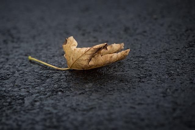 5 Semne ca te afunzi intr-o stare psihica de nedorit