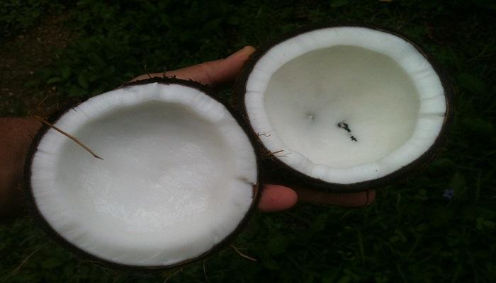 13 intrebuintari ale uleiului de cocos in orice gospodarie