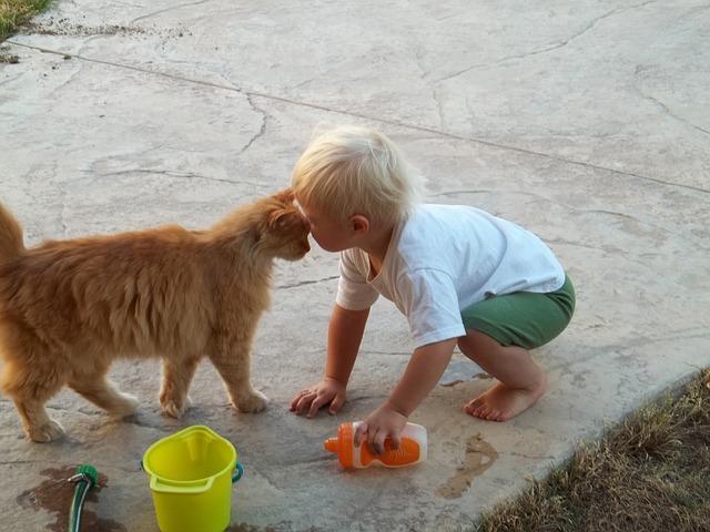 3 Moduri in care animalele de companie influenteaza pozitiv dezvoltarea copiilor