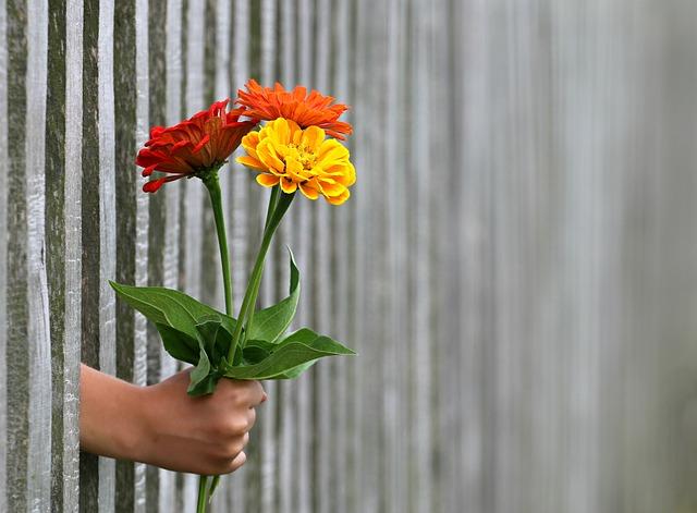 De ce uneori trebuie sa renunti la altruismul excesiv