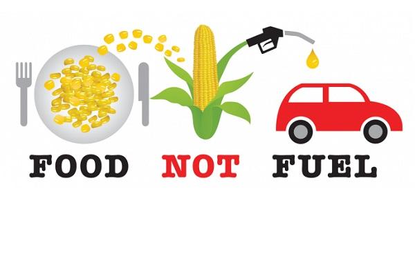 Mai mult bioetanol, mai putina hrana pentru populatia lumii