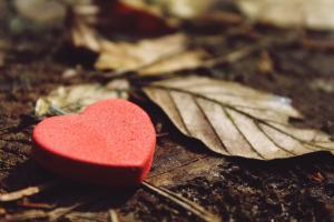 15 citate despre viata care te vor inspira in fiecare zi