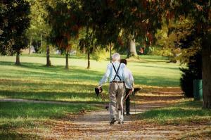 4 Beneficii ale plimbarilor zilnice