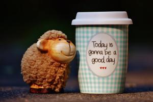 4 pasi care te vor ajuta sa fii pozitiv