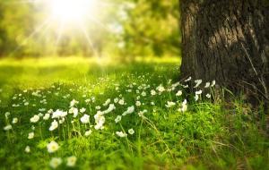 5 activitati care iti vor garanta o vara de neuitat