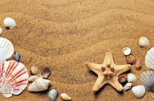 Sfaturi utile pentru vacanta de la mare. Ce lucruri NU trebuie sa uiti acasa