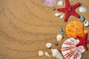 Sfaturi de care sa tii cont cand mergi la plaja