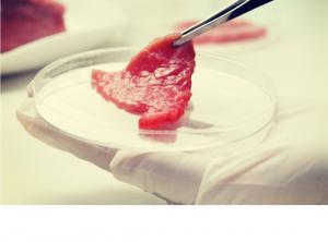 Alimentul viitorului: carnea artificiala!