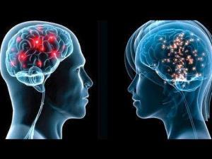 Creierul barbatilor nu este chiar asa de diferit de cel al femeilor, ne arata un studiu recent.