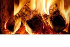 O sursa banala de energie revine in prim-plan: lemnul